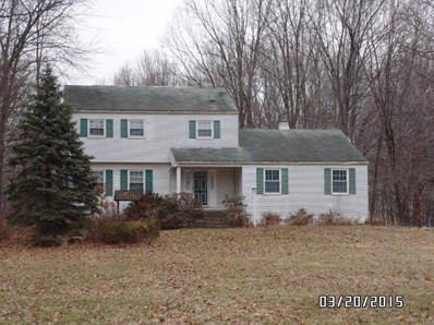 9208 New Rd, Jackson Township, OH 44451 - #: P1111DF
