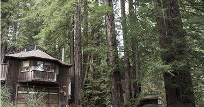 3520 Deer Meadow Ln, Occidental, CA 95465 - #: P111D32
