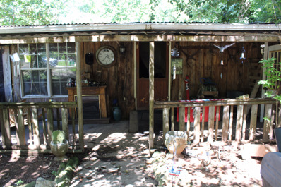 4392 Maroney Mill Rd, Douglasville, GA 30134 - #: P111P55