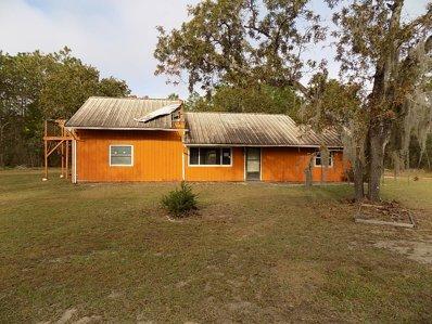 13339 Highgrove Rd, Spring Hill, FL 34609 - #: P111RKN