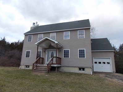 20 Superstitious Dr, Coxsackie, NY 12051 - #: P111TLT