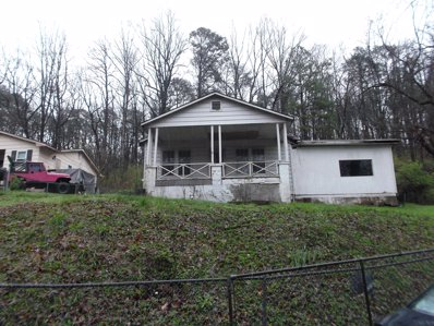 110 Southview Street, Chattanooga, TN 37405 - #: P111WR8