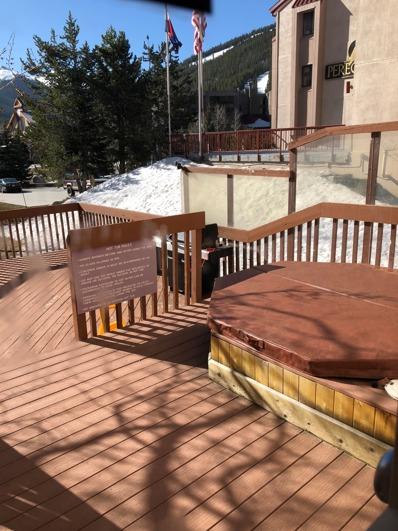 35 Wheeler Place, Suite 101, Copper Mountain, CO 80443 - #: P1121FZ
