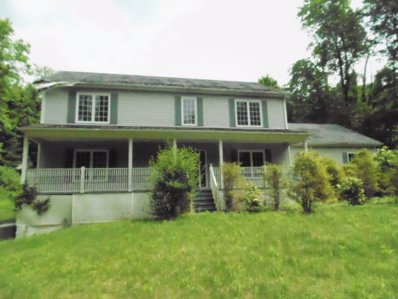 42 Rural Ave, Wingdale, NY 12594 - #: P1122P2