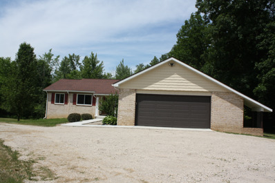 9110 Argentine Road, Deerfield Twp, MI 48451 - #: P1123N6