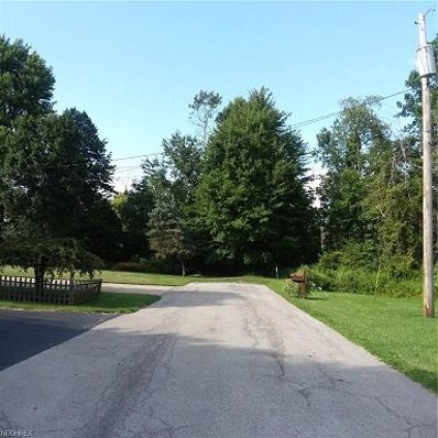 State Route 7, Masury, OH 44438 - #: P1126SR