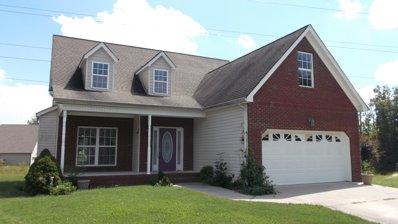 1718 Sterling Oaks Ln, Chattanooga, TN 37421 - #: P1126WY