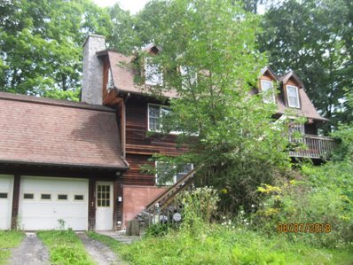 185 Dawson Rd, Hillsdale, NY 12529 - #: P11271K
