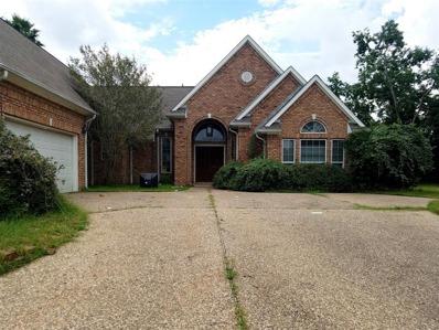 78 Lakes Estates, Montgomery, TX 77356 - #: P11275Y