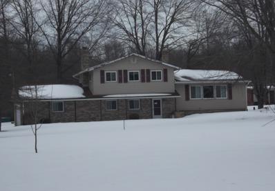 1171 N E River Rd, Lake Milton, OH 44429 - #: P112CEB