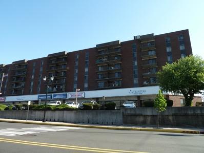 10 North Wood Avenue, Unit 300, Linden, NJ 07036 - #: P112GGB