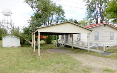 410 Commercial, Clarkton, MO 63857 - #: P112GXQ