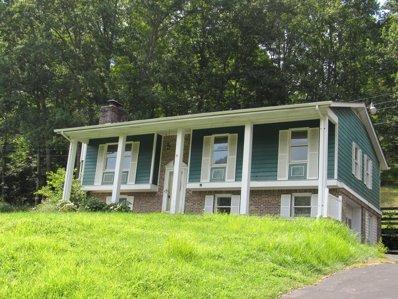189 Jefferson Acres Dr, Big Stone Gap, VA 24219 - #: P112LH8