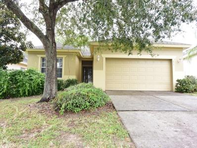 654 Winthrop Drive, Spring Hill, FL 34609 - #: P112P8J
