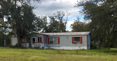 11151 Ne 70TH St, Bronson, FL 32621 - #: P112PTS